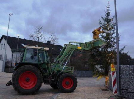 Fleißige Helfer haben einen Baum aufgestellt und viele Lichter angebracht.