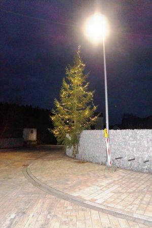 """Der erste Viehberger Weihnachtsbaum sieht gut aus an der Gartenmauer. Wenn demnächst noch das """"Holzbankerl"""" installiert wird und nächstes Jahr die bereits gepflanzten Kletterpflanzen sich um die Steine winden, dann wird die Steinmauer noch schöner."""